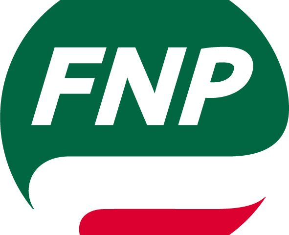 FNP pallino